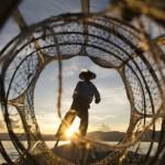 20 Fotos incríveis do Concurso National Geographic 2014